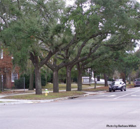 photo of a street corner in a North Charleston, SC neighborhood